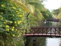 湖旁边风景 免版税库存照片
