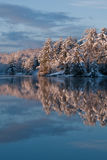 湖早晨冬天 图库摄影