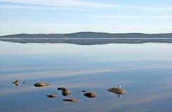 湖早晨 免版税库存图片