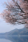 湖春天tazawa 库存照片