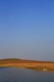 湖月亮 库存图片