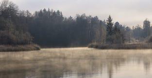 湖有薄雾的早晨冬天 库存图片