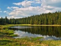 湖本质 库存图片