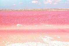 湖桃红色盐 托雷维耶哈,西班牙 库存照片