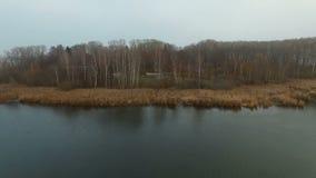 湖森林海岸在秋天在雾 影视素材