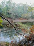 湖概要 免版税库存照片