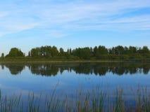 湖横向夏天 免版税库存图片
