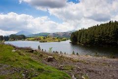湖横向山 免版税图库摄影