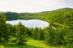 湖水和森林 免版税图库摄影