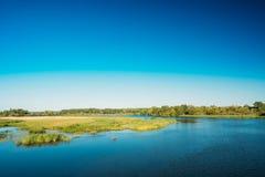 湖池塘河夏天晴天 背景蓝色云彩调遣草绿色本质天空空白小束 复制空间 免版税图库摄影
