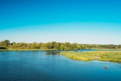 湖池塘河夏天晴天 背景蓝色云彩调遣草绿色本质天空空白小束 复制空间 免版税库存照片