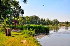 湖池塘 库存图片