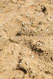 湖沙子 免版税库存图片