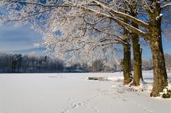 湖海岸在冬天 库存照片