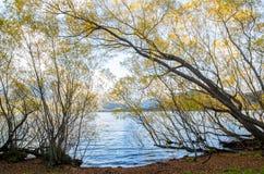 湖海斯的湖边 库存图片