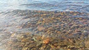湖清楚的水 做下面一块美丽的石头 免版税库存图片