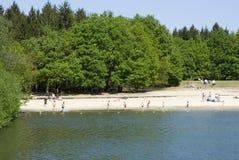 湖游泳 免版税库存图片