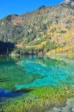 湖用在九寨沟的清楚的水 免版税库存图片