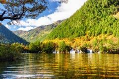 湖用在五颜六色的秋天森林中的透明的水 免版税库存图片
