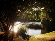 湖的不可思议的看法 免版税库存图片