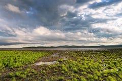 湖的俄国远东海湾的哈巴罗夫斯克边疆区由的 免版税图库摄影