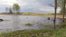 湖的全景费用有木小船的 Braslav 迟来的 影视素材