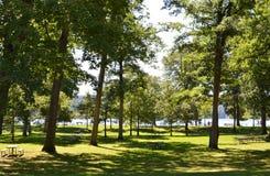 湖的公园 库存图片