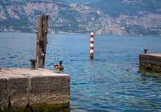 湖的加尔达小游艇船坞公爵 免版税库存照片
