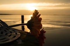 湖的双子星座 免版税图库摄影