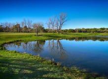 湖的好的看法 免版税库存照片
