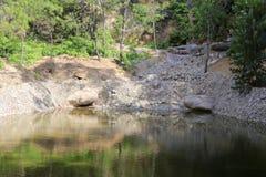 湖的安静的表面 免版税库存照片