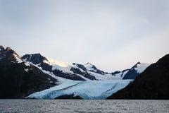 从湖的接近的Portage冰川在阿拉斯加的原野在夏天 免版税库存照片