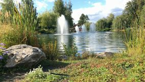 湖的片段,在国立公园公园在基辅附近的Mezhyhiria 影视素材