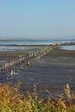 湖的看法在盐附近博物馆的  库存图片