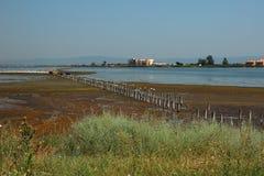湖的看法在盐附近博物馆的  图库摄影
