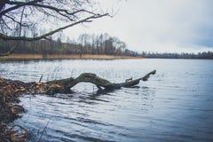 湖的看法在秋天 图库摄影