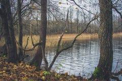湖的看法在秋天 库存照片