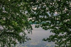 湖的看法通过树的叶子 r 免版税库存图片