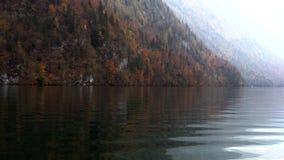 湖的秋天森林,慢动作 股票录像