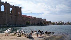 湖的船坞 库存照片