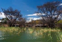 湖的被充斥的房子 图库摄影