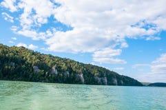 湖的银行的森林 免版税库存照片