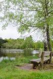 湖的长凳 免版税库存照片