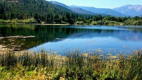 湖的静止 免版税库存图片