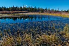 从湖的麦金利山在露营地附近 库存照片