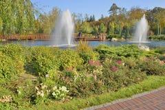 湖的细节在风景公园 库存图片