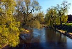 湖秋天风景在10月 免版税库存照片