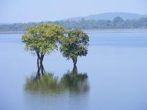 湖端 免版税图库摄影