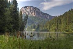 湖红色 库存图片