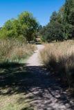 湖罗伯特足迹的垂直 免版税库存照片